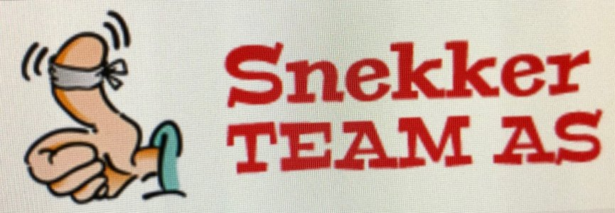 Snekker Team AS